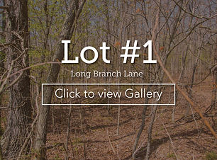 LongBranchLotCoverLot1LBlane.jpg