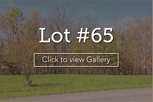 LongBranchLotCover#65web.jpg