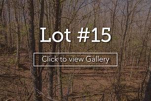 LongBranchLotCover15.jpg