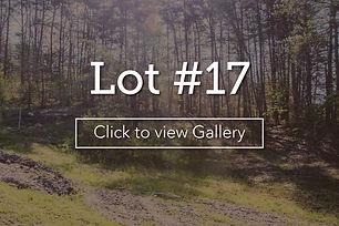 LongBranchLotCover17.jpg