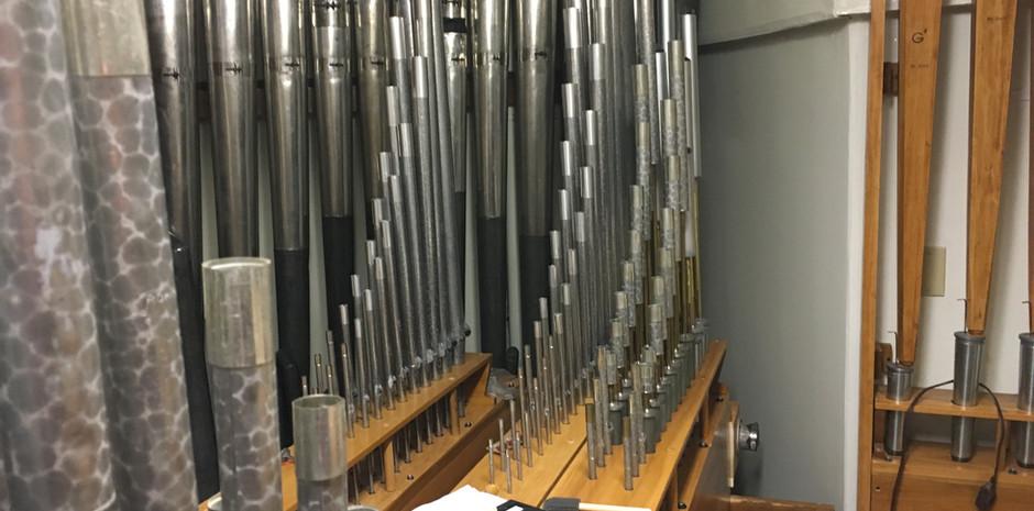 Orchestral Chamber:  (Back L - R): Diaphonic Diapason bass offset, Gamba, Gamba Celeste, Krumet, French Horn
