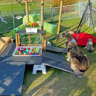 Der Spielplatz  Der neue selbstgebaute Spielplatz in Hermiswil wird schrittweise aufgebaut, um die Welpen nicht sofort zu überfordern und Abwechslung zu bieten. Verschiedene Bodenunterlage, bewegliche Teile und Stufen gehören dazu sowie die beliebte Schattenschlafplätzen darunter.