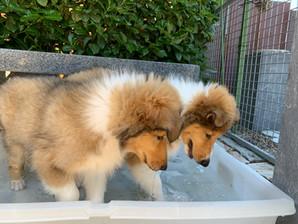 38 Grad warm dann ist baden ein muss.