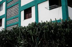 CUBA: ForTheArt