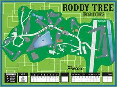 overview roddie tree.jpg