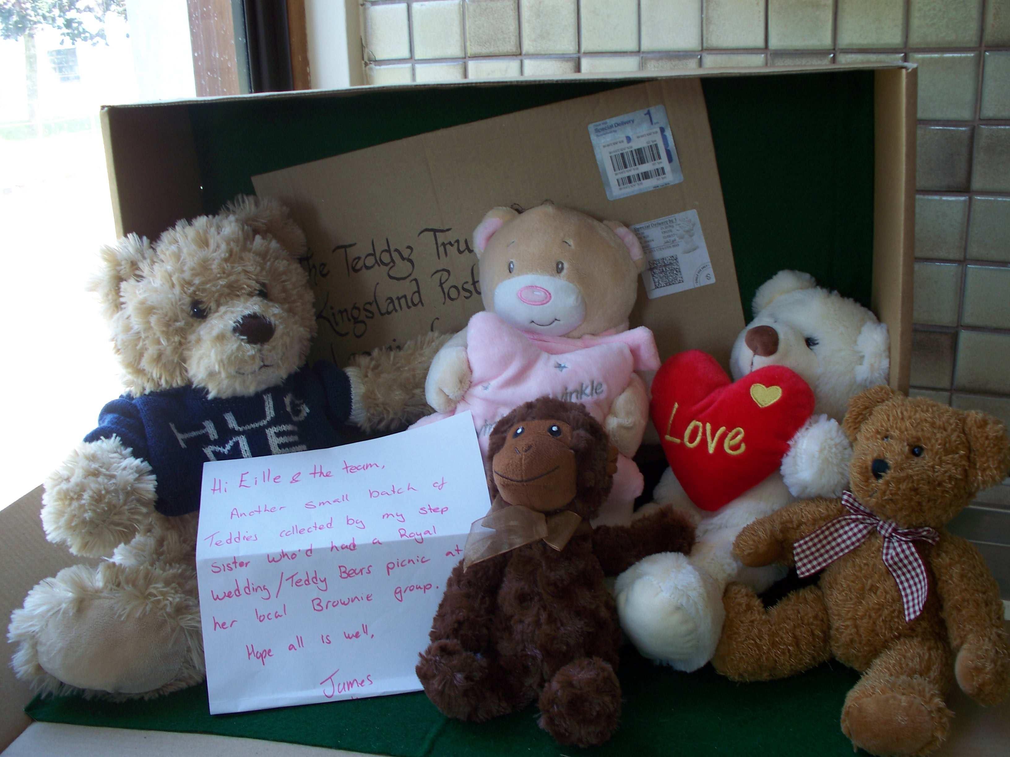 20180704 Thank you James and Brownie group at the Teddy Bears Picnic
