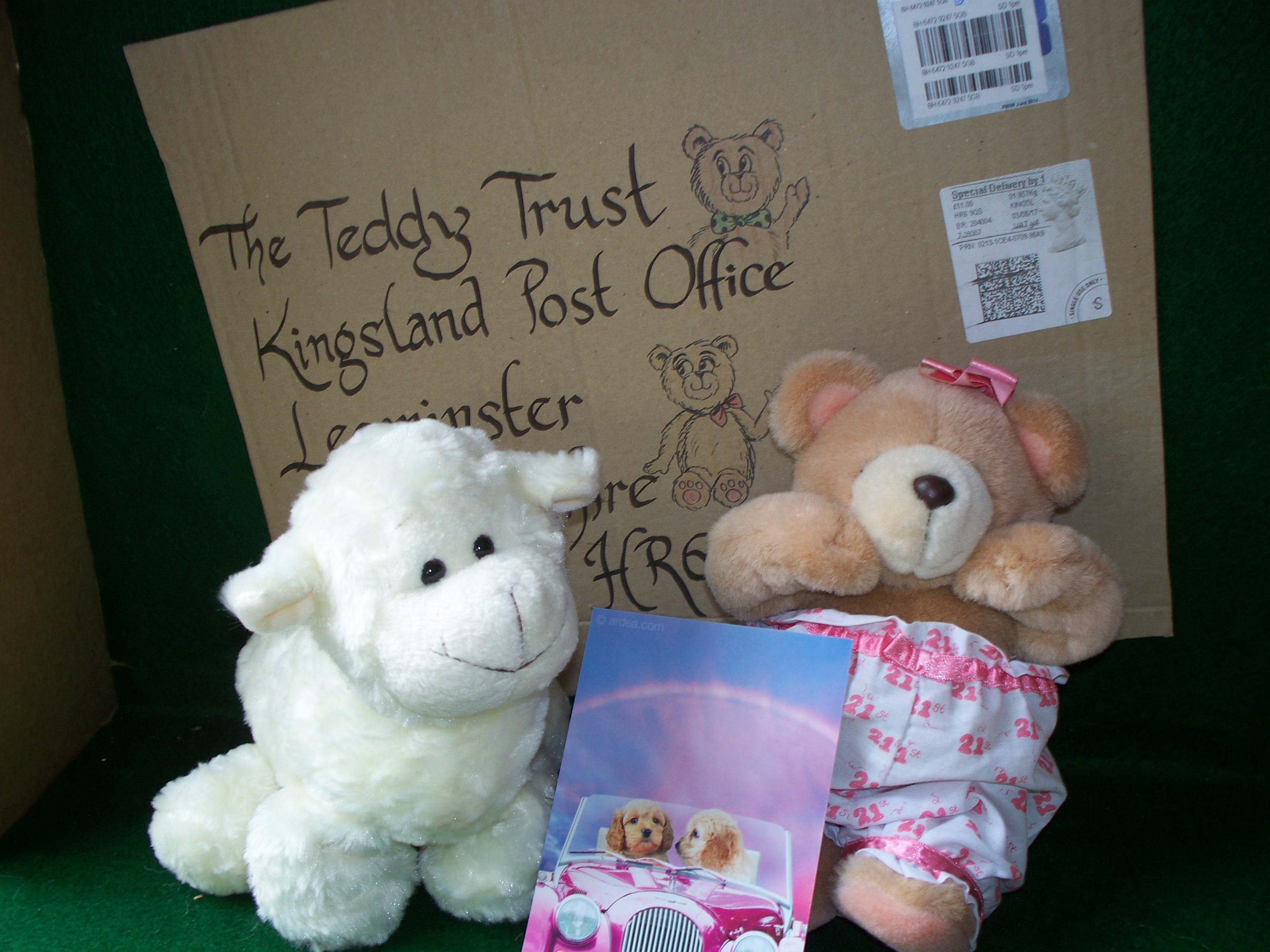 20180620 These cute teddies have come from Alison , and we thank you so much for also donating via