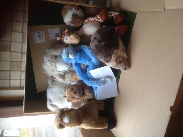 20180719 Great teddies sent by Terri and Polly