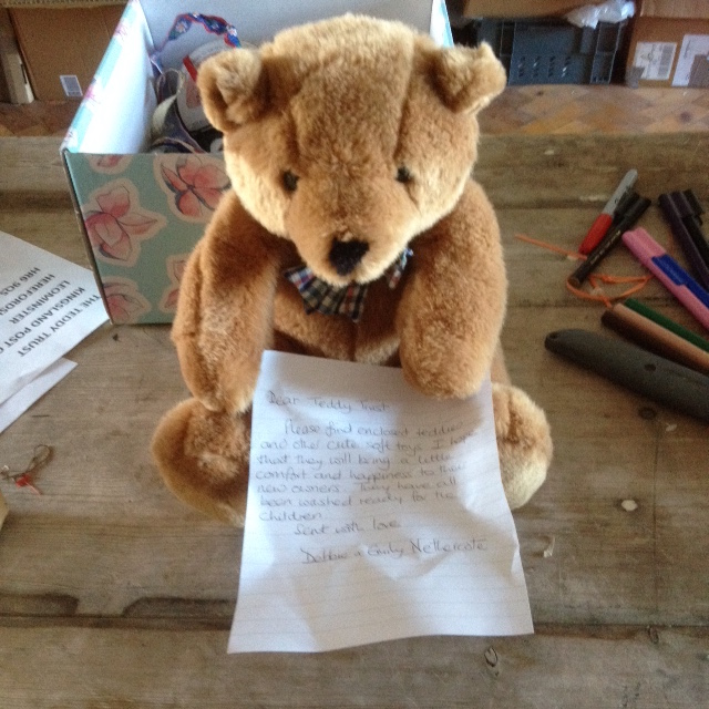 20171030 Perfect teddy from Debbie and Emily