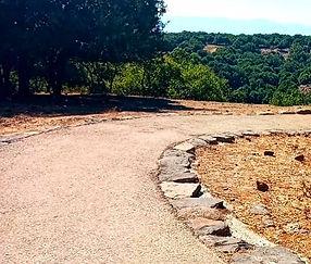 טיול בישראל מדריך טיולים מסלול נגיש1.jpg