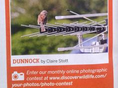 Discover Wildlife magazine 2014 (crop).jpg