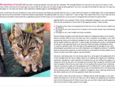 Intelligent Cat Care November 2017.png
