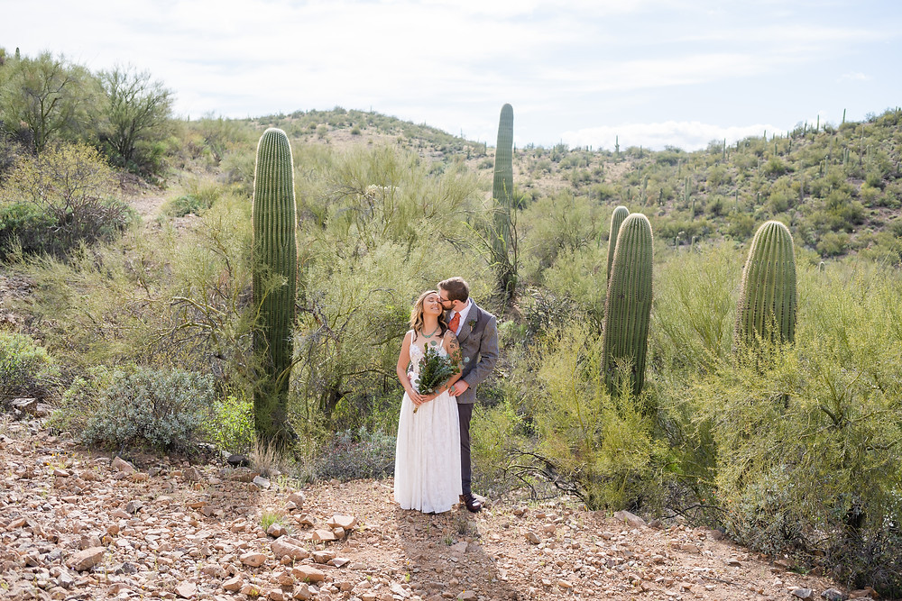 bride and groom in front of cacti in tucson, arizona