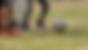 vlcsnap-2017-01-18-10h40m01s126.png