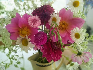 Dahlias Daisies and Cosmos