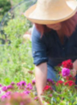 Local Flower Grower