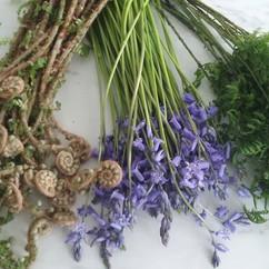 Woodland forage_#wherethewildthingsare _#fromseekingsflowerfarm _#wildflowers _#wildatheart _#irishgrownflowers _#irishwildflowers _#grownno