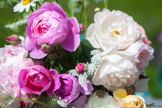 Anna-Flowers-54.jpg