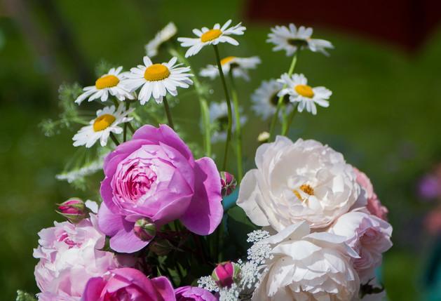 Anna-Flowers-53.jpg
