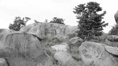 02 Namiri Plains (143).jpg