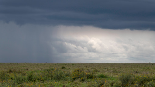 02 Namiri Plains (34).jpg