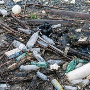 Plastic WAAAHHH-ter Bottles. By Chelsea Lay