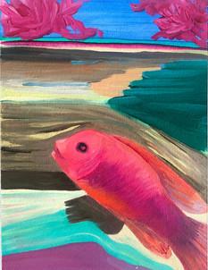 """Hey Little Fishy"""