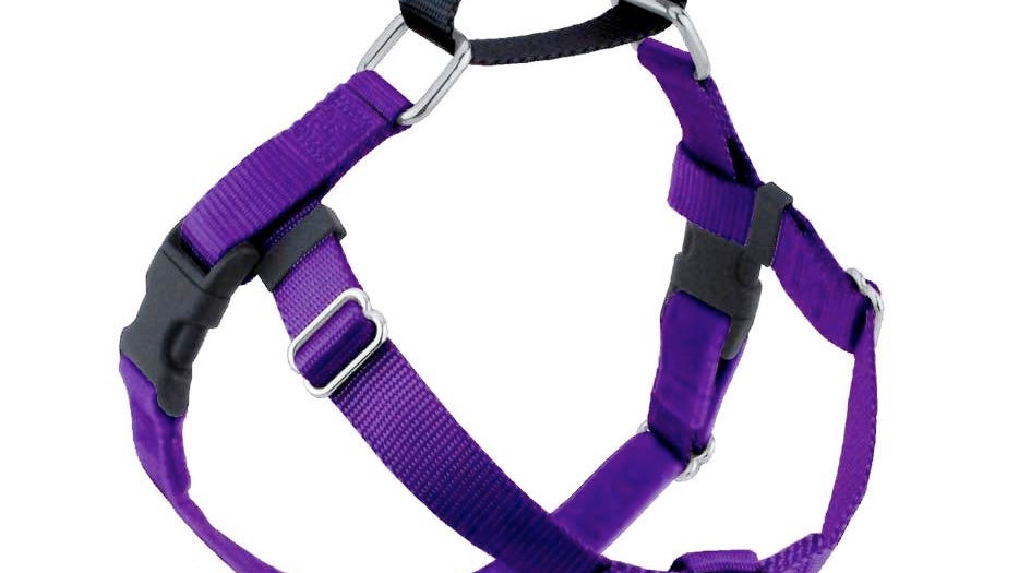 Freedom Harness Deluxe Training Kit
