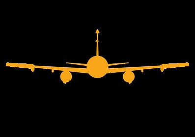 TuInstructorDeVuelo logo 2 seminegro.png
