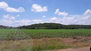 Agricultura, polímero absorbente, renetedor de humedad