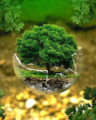 Sustentable.png