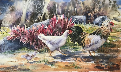 Rooster for facebook.jpg