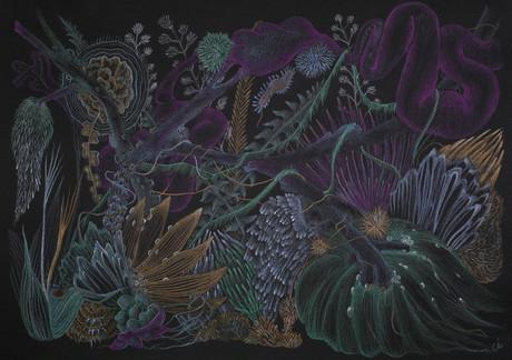 Flowers of the Night / Gecenin Çiçekleri