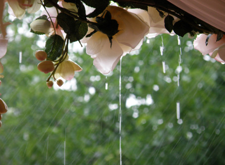 6 Ways to Deal With Rain on Your Wedding Day