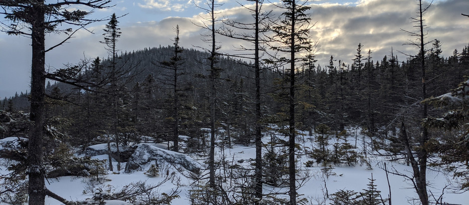 Mt. Hale: A Surprisingly Tough Hike to Start Our New Year's Backpacking Trip