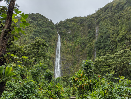Haleakala National Park: My Favorite Hawaiian Hike in the Kīpahulu District and the Road to Hana