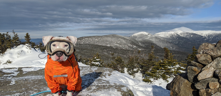 Mt. Jackson: Lucy's First Winter 4,000 Footer and a Beautiful Start to the Season