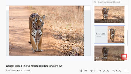 slides 1.jpg