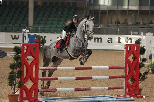 Horses For Champions in Kreuth