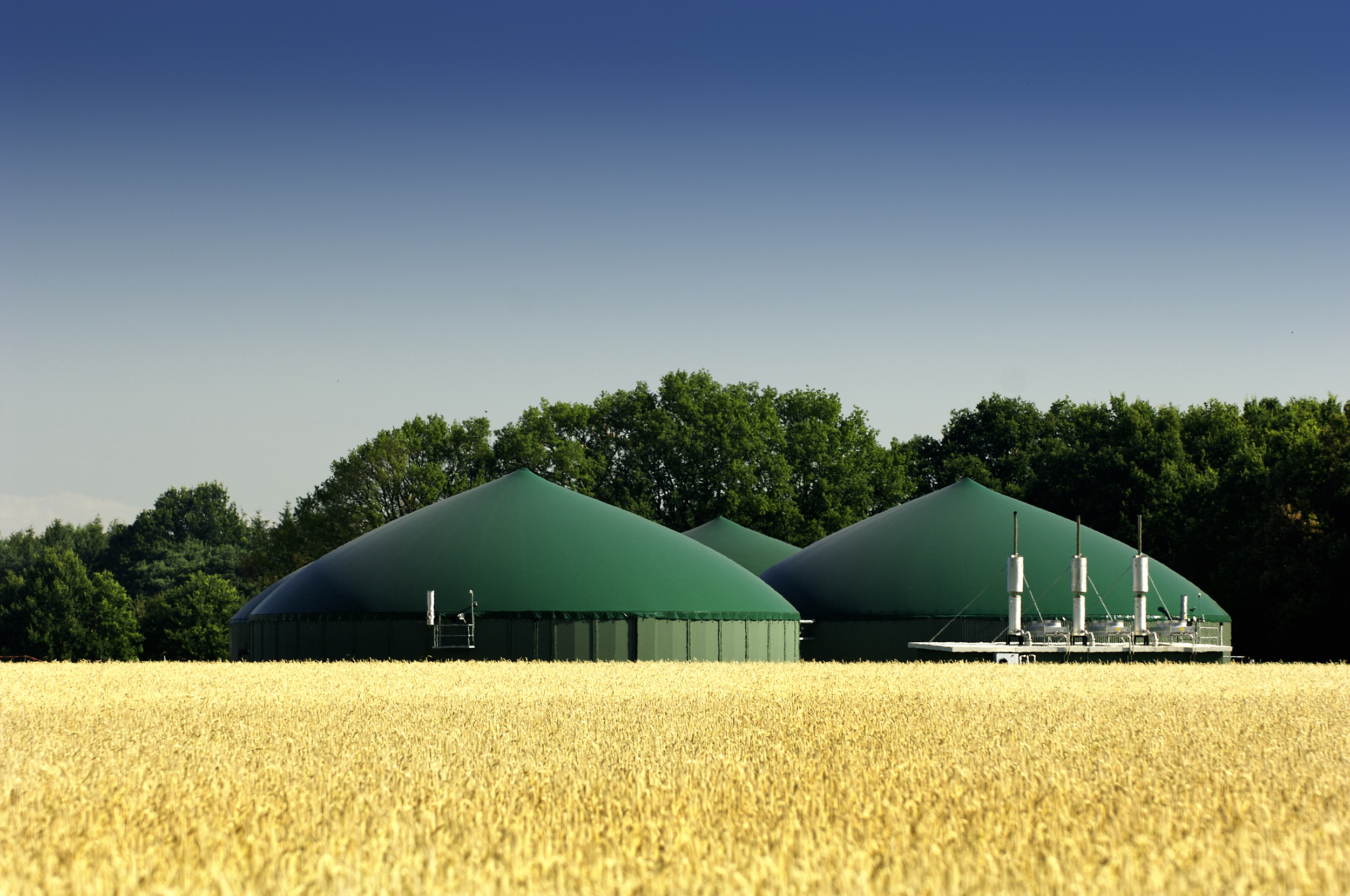 Agricultural biogas