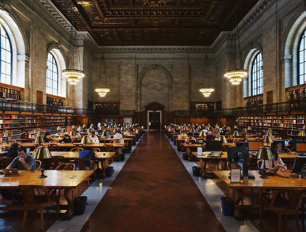 A library full of business owners studying hard for success