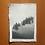 Thumbnail: A6 CARD FIR TREEf