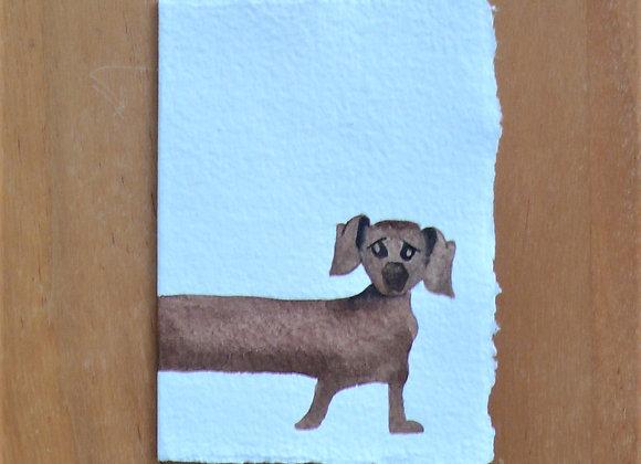 A7 CARD DOG