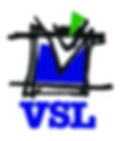 41 VSL.jpg