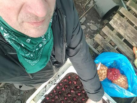 Dan's top gardening tips for March