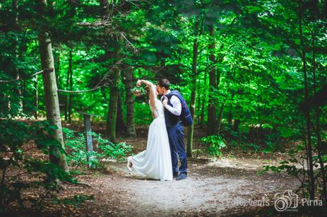 Hochzeit Jagdschloss Graupa