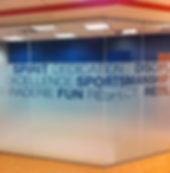 Custom Frost Decorative Film installed by Extreme Window Film Solutions™