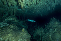 Cenotes-Dreamgate-©David_Kocher-201703.DNG-47.jpg