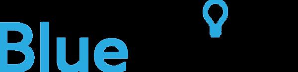 BlueThink Database Solutions Logo