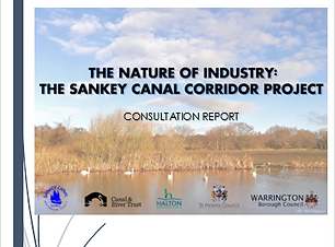 Sankey report cover.PNG